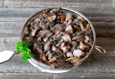 рецепт грибного супа из подберезовиков с фото
