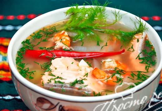 Суп из кеты с фенхелем