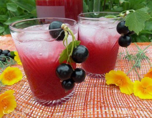 Напиток из ревеня и черной  смородины