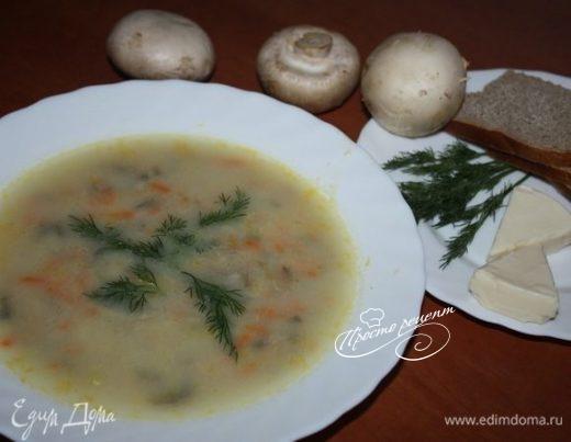 Быстрый суп с грибами и плавленым сыром