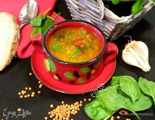 Суп из чечевицы с мясным фаршем и шпинатом