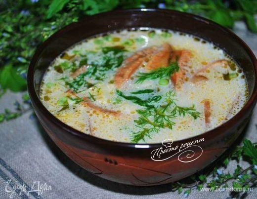 Сливочный суп с рыжиками