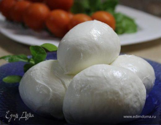 Сыр моцарелла (Mozzarella)