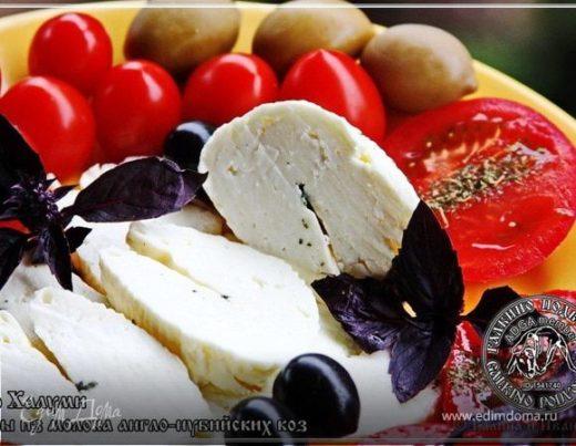 Сыр Халуми и Анари из молока англо-нубийских коз